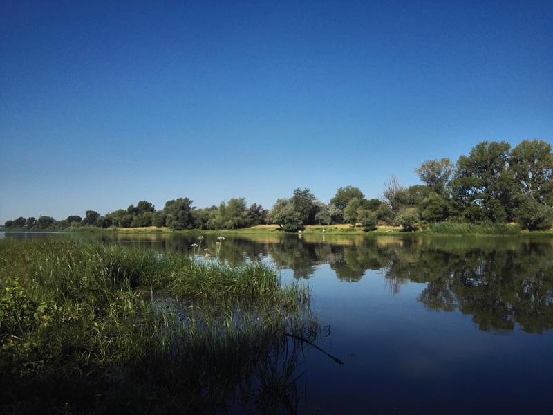 阿斯特拉罕,运河,小溪,小岛。荣耀7拍摄。摄影:臧亚伟