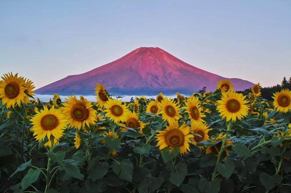 一辈子只拍一座山,你会被他的照片感动吗?