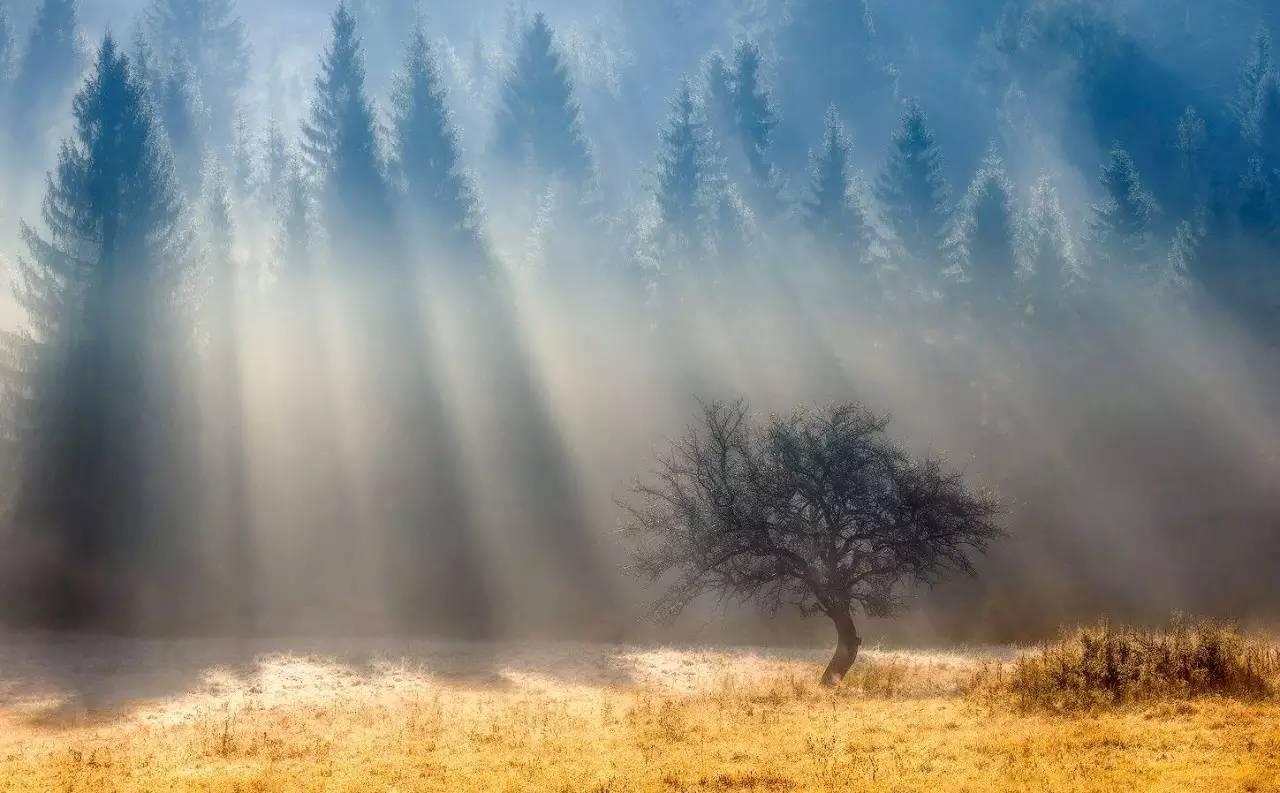 如何拍好耶稣光?从前期到后期给您说明白!