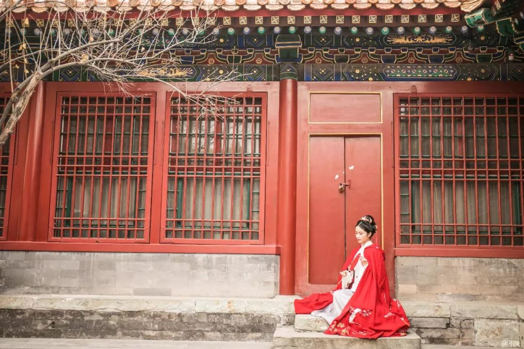 漫步冬日紫禁城,感受故宫之美 | 影像发现文化·北京站