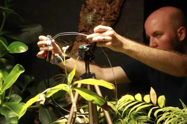【摄影新鲜事】植物也会自拍?| 富士发布高颜值无反 X-Pro3 | 佳能宣布开发 EOS 1-D X MarkⅢ
