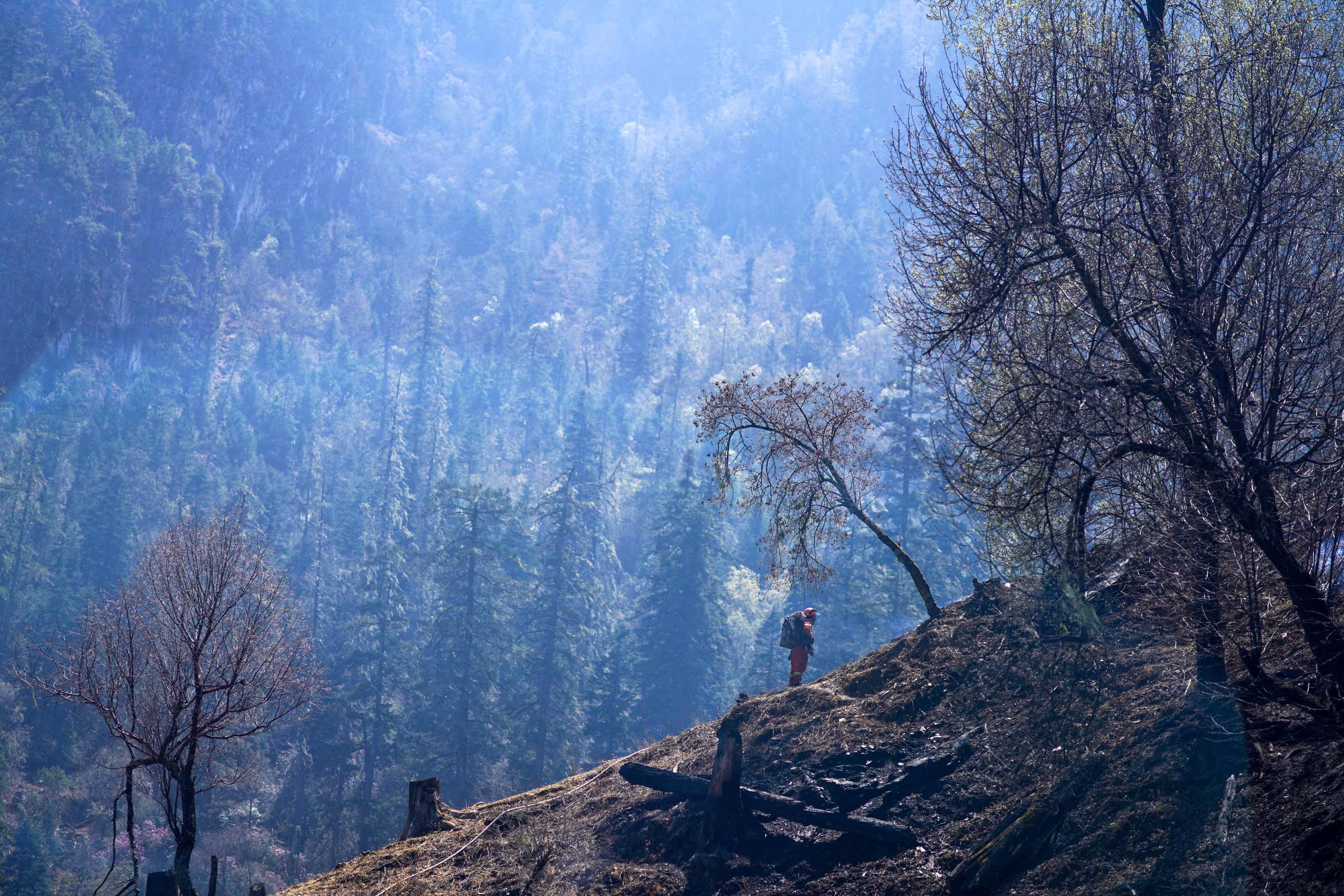 凉山森林消防员的火场战事