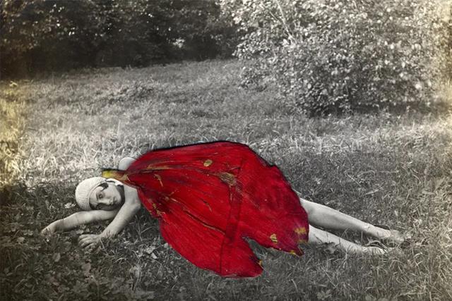 """当艺术家想要拍照的时候,整个世界都是她的 """"相机"""""""